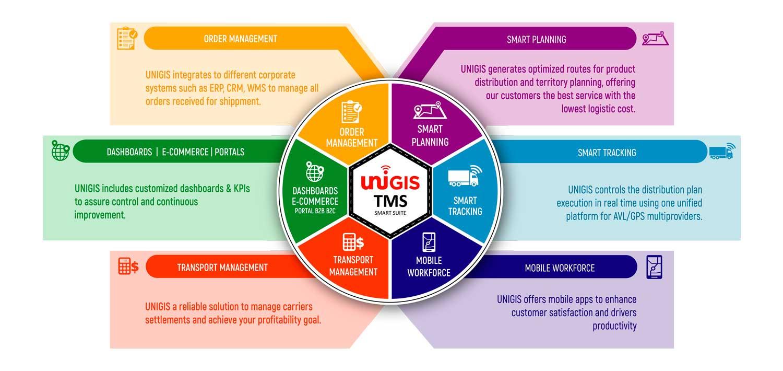 infografia-tms-ingles-unigis
