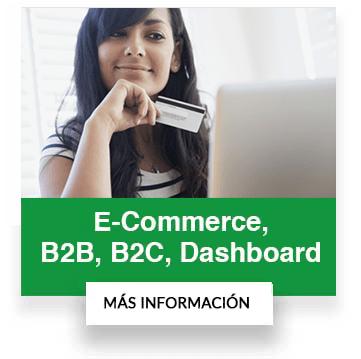 portales b2b b2c ecommerce